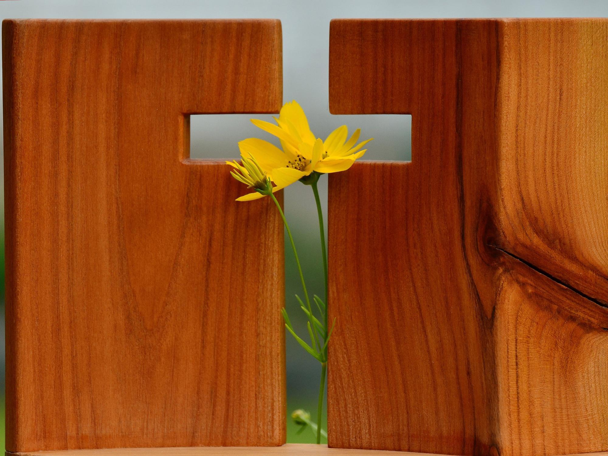 Fastenzeit 2021 Katholisch